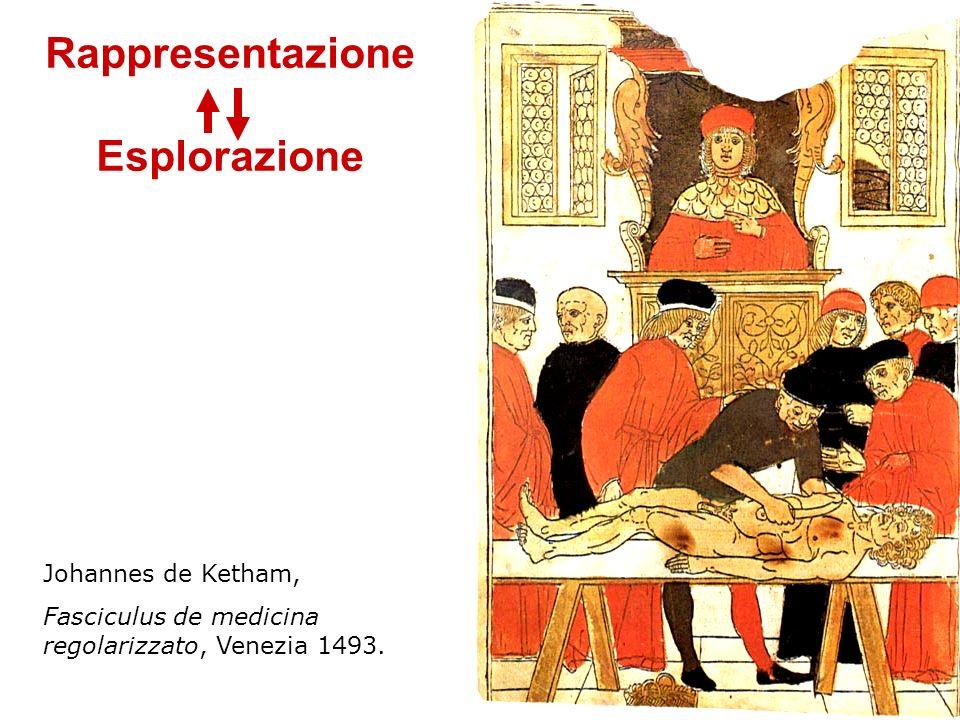 Johannes de Ketham, Fasciculus de medicina regolarizzato, Venezia 1493. Rappresentazione Esplorazione