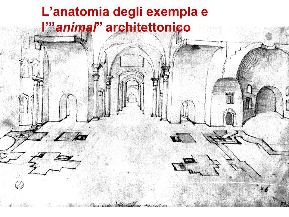 Lanatomia degli exempla e lanimal architettonico