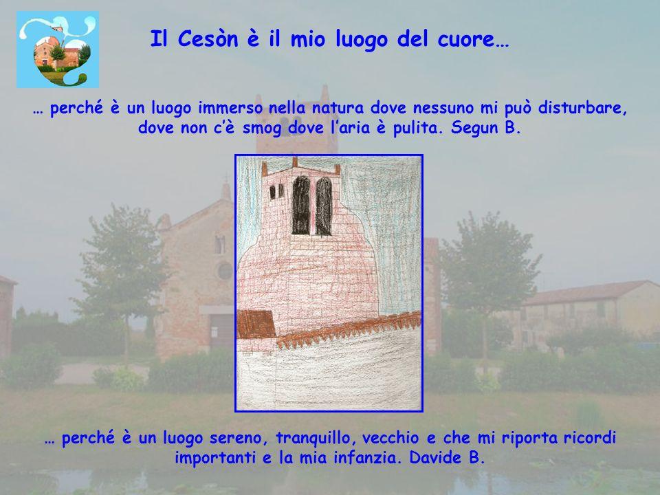 Il Cesòn è il mio luogo del cuore… … perché è un luogo immerso nella natura dove nessuno mi può disturbare, dove non cè smog dove laria è pulita.