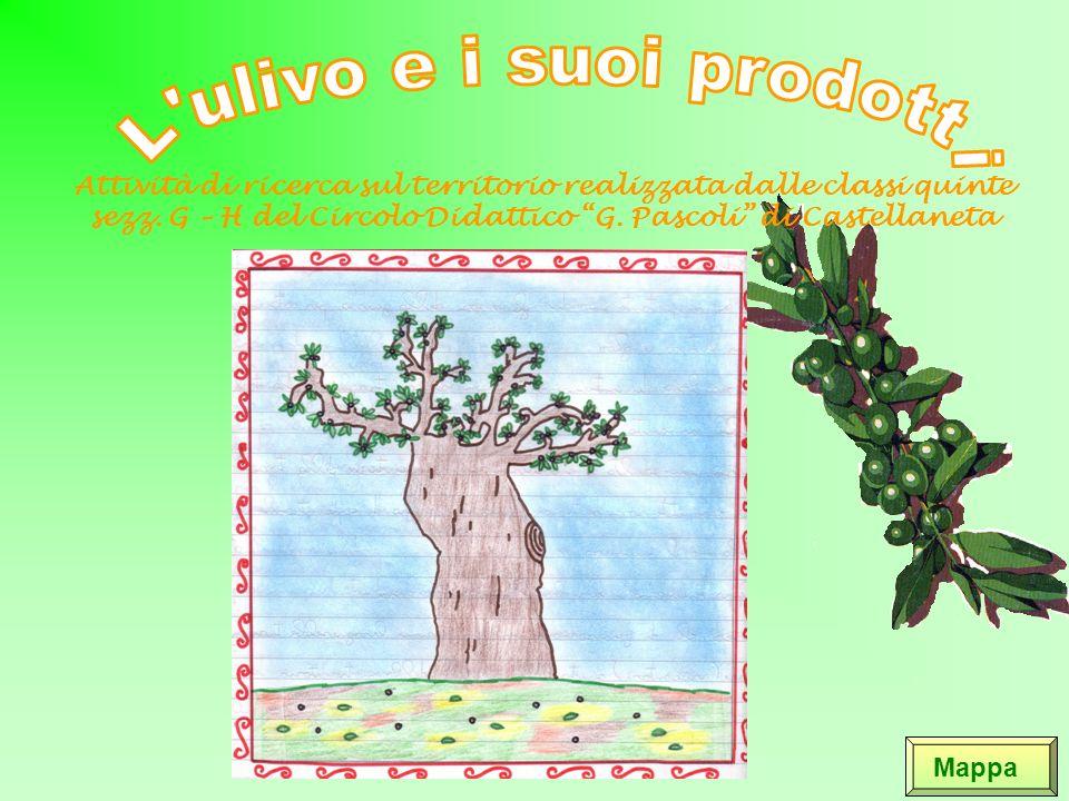 Le olive da mensa Ci sono alcune varietà di olive da mensa che vengono conservate in salamoia.