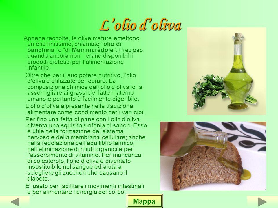Le varietà presenti sul nostro territorio Nel nostro territorio, la Terra delle Gravine, la produzione delle olive è diversa in quantità e qualità.