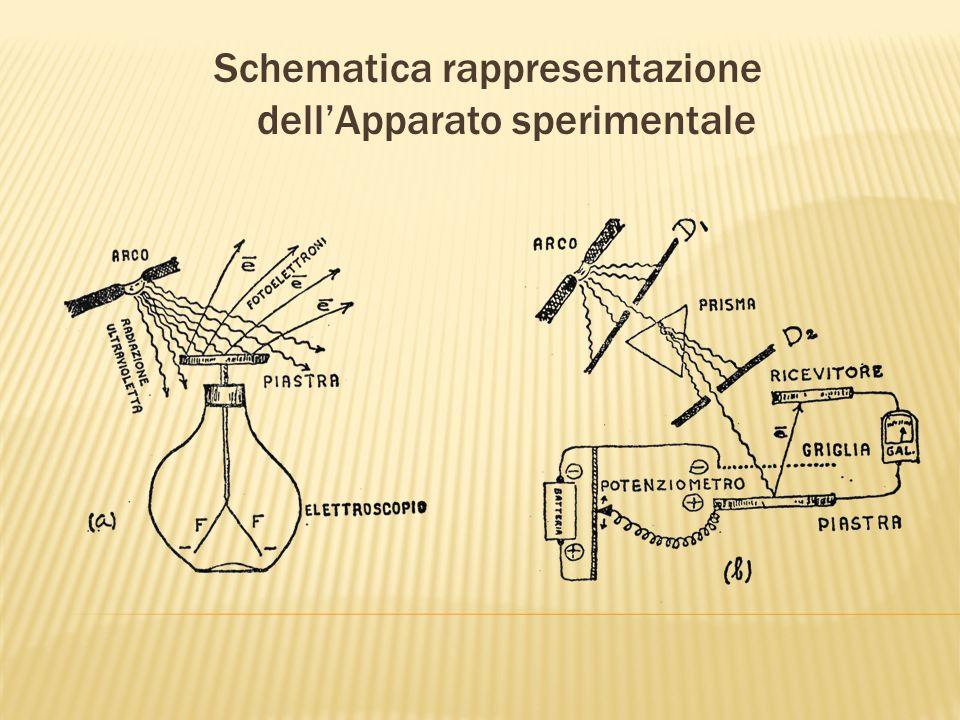 Schematica rappresentazione dellApparato sperimentale