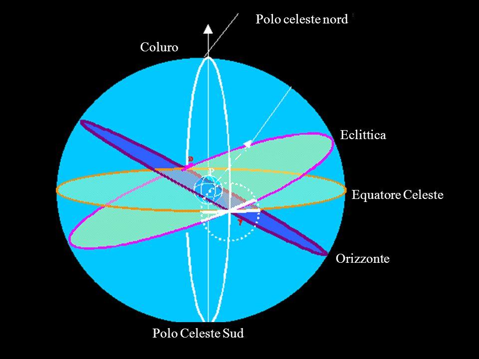Polo celeste nord Coluro Polo Celeste Sud Eclittica Equatore Celeste Orizzonte