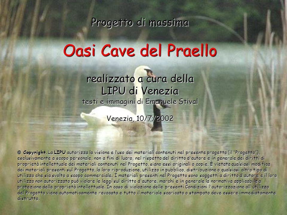 Progetto di massima Oasi Cave del Praello realizzato a cura della LIPU di Venezia testi e immagini di Emanuele Stival Venezia, 10/7/2002 © Copyright.
