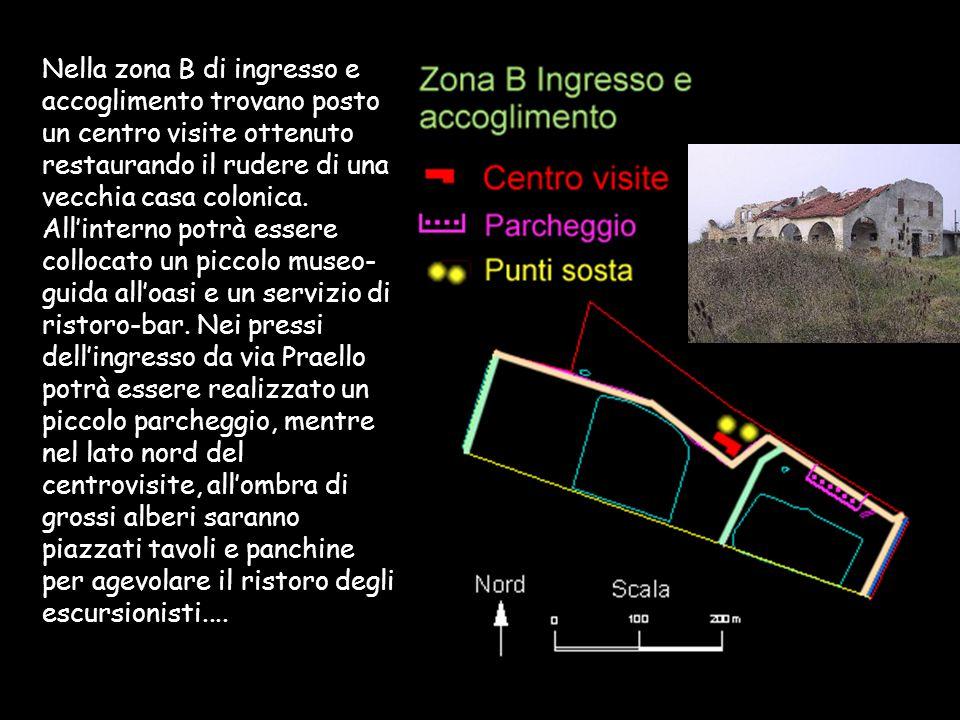 Nella zona B di ingresso e accoglimento trovano posto un centro visite ottenuto restaurando il rudere di una vecchia casa colonica. Allinterno potrà e