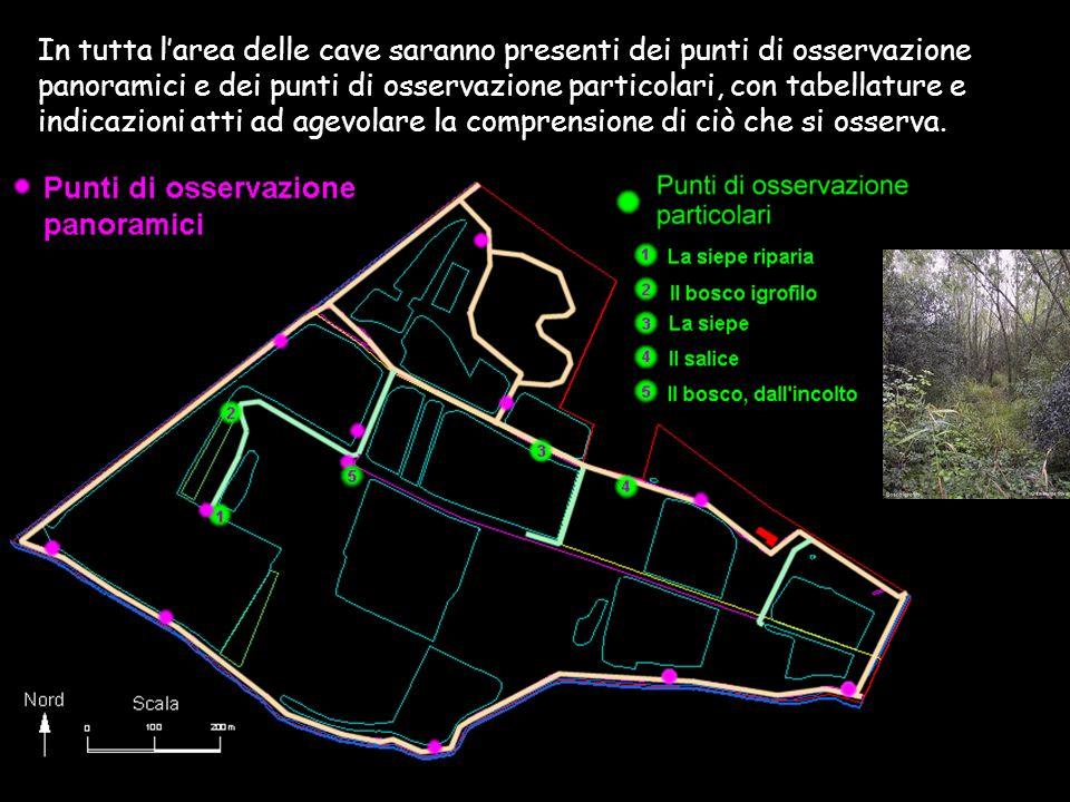 In tutta larea delle cave saranno presenti dei punti di osservazione panoramici e dei punti di osservazione particolari, con tabellature e indicazioni