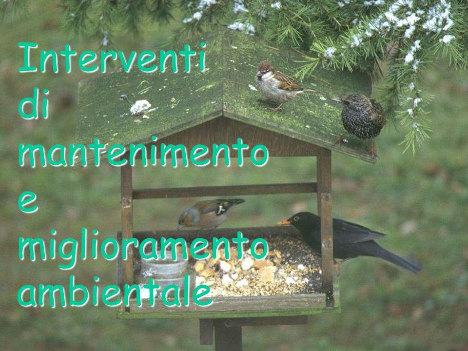 Interventi di mantenimento e miglioramento ambientale
