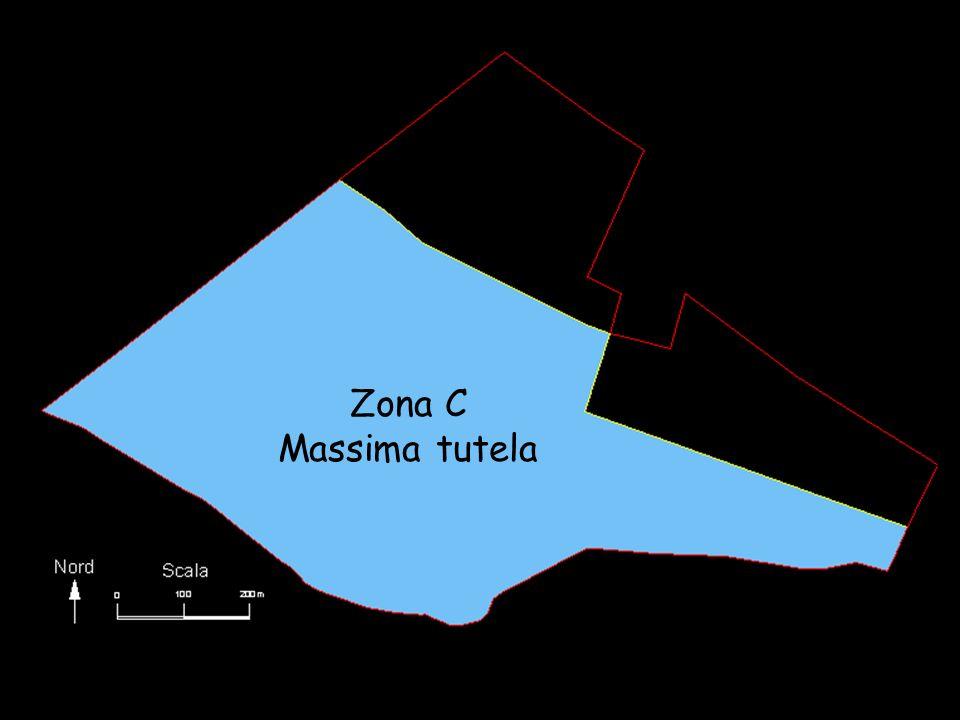 Zona C Massima tutela