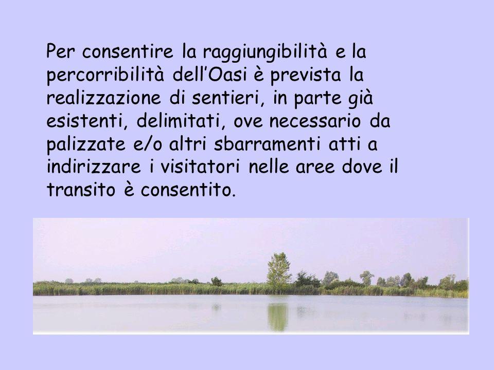 Per consentire la raggiungibilità e la percorribilità dellOasi è prevista la realizzazione di sentieri, in parte già esistenti, delimitati, ove necess