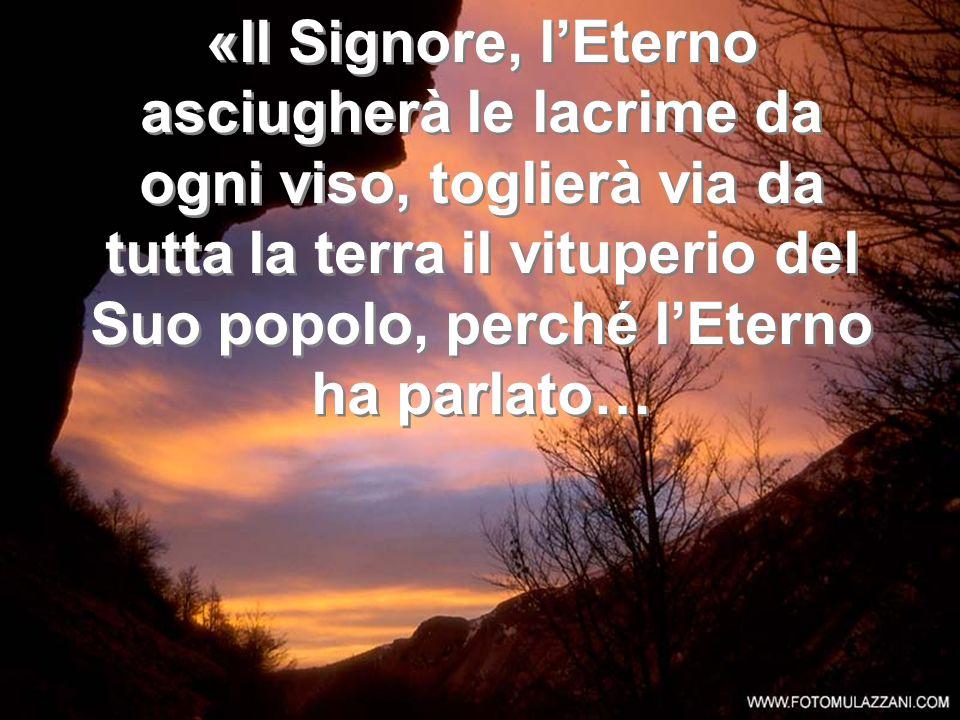 … poiché io sono uno straniero davanti a Te, un pellegrino, come tutti i miei padri.» … poiché io sono uno straniero davanti a Te, un pellegrino, come