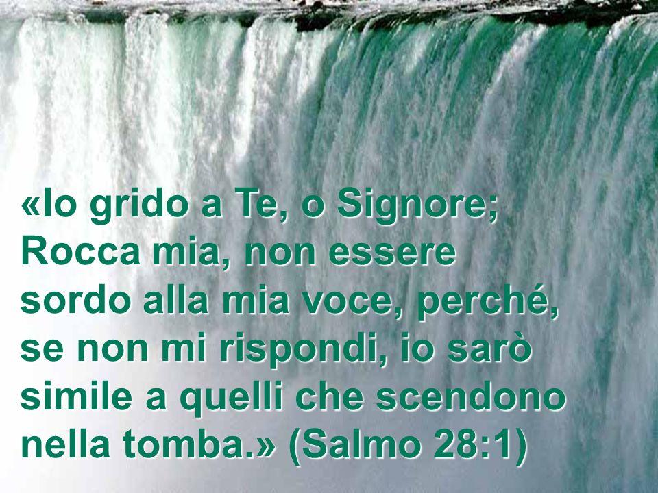 … Tu, o Eterno, li proteggerai e li preserverai da questa generazione per sempre.» (Salmo 12:5-7)