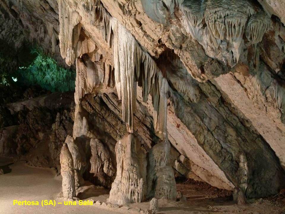 Risalgono a ben 35 milioni di anni fa le origini delle Grotte di Pertosa e sono le più importanti dell'Italia del sud, perchè le uniche ad essere attr