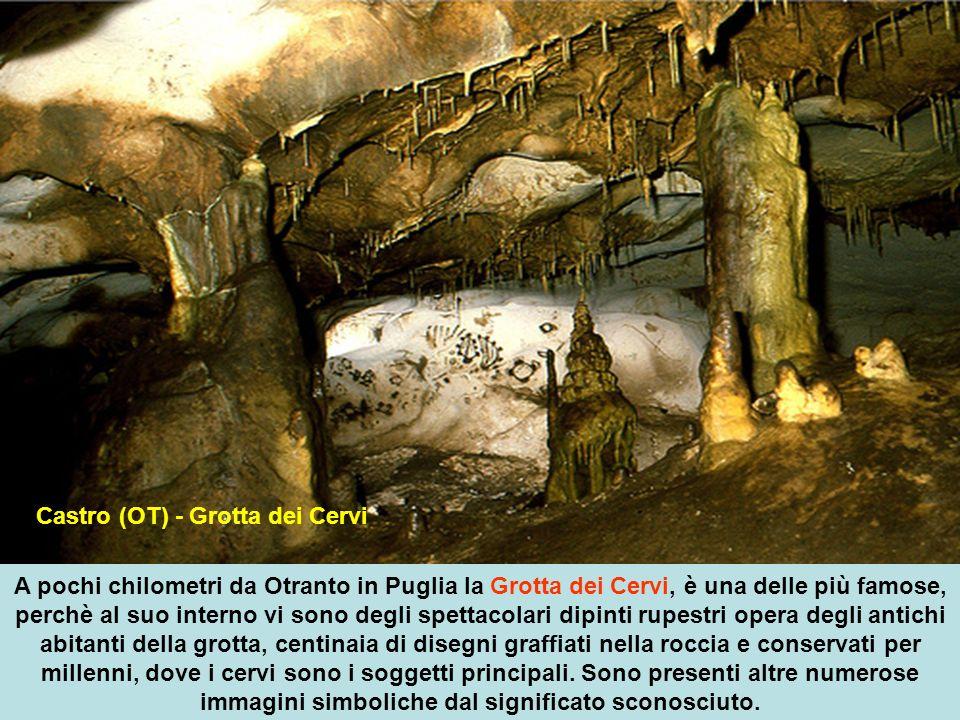 A pochi chilometri da Otranto in Puglia la Grotta dei Cervi, è una delle più famose, perchè al suo interno vi sono degli spettacolari dipinti rupestri opera degli antichi abitanti della grotta, centinaia di disegni graffiati nella roccia e conservati per millenni, dove i cervi sono i soggetti principali.