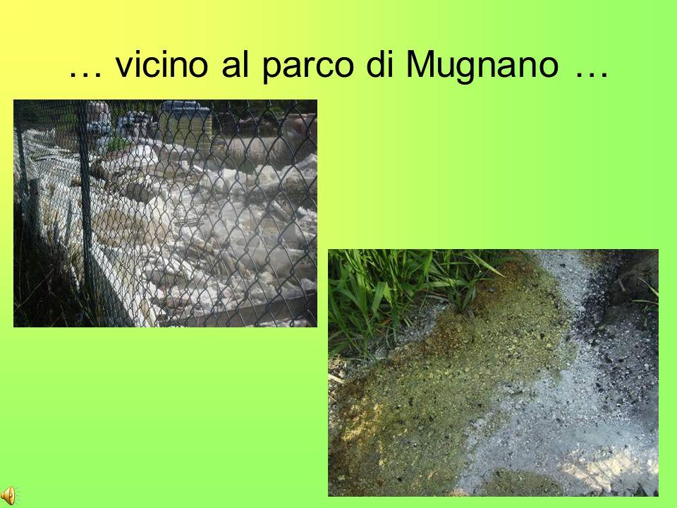 Da qualche tempo nei nostri paesi si effettua la raccolta differenziata dei rifiuti.