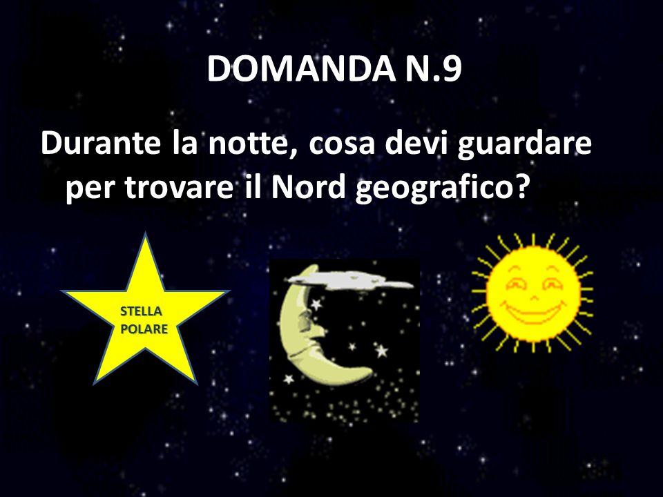 DOMANDA N.9 Durante la notte, cosa devi guardare per trovare il Nord geografico? STELLA POLARE STELLA POLARE
