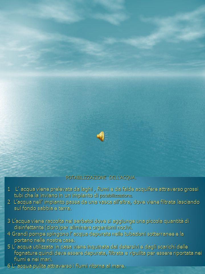 POTABILIZZAZIONE DELLACQUA. POTABILIZZAZIONE DELLACQUA. 1 L acqua viene prelevata da laghi, fiumi e da falde acquifere attraverso grossi tubi che la i