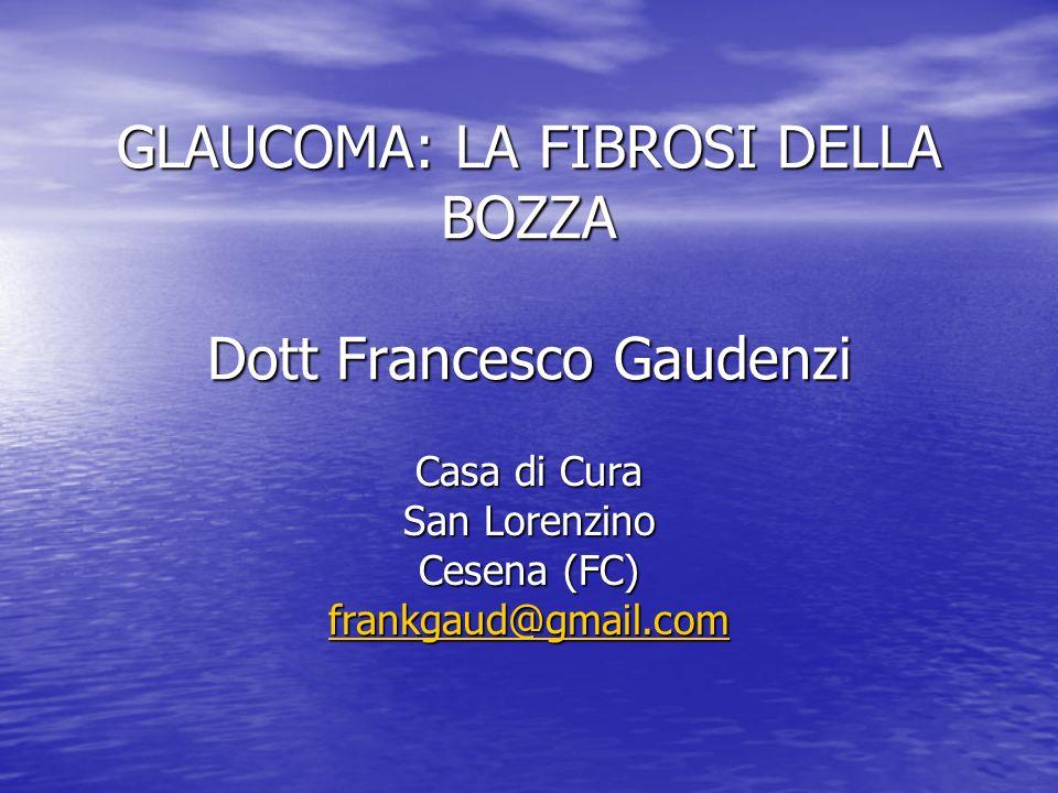 GLAUCOMA: LA FIBROSI DELLA BOZZA Dott Francesco Gaudenzi Casa di Cura San Lorenzino Cesena (FC) frankgaud@gmail.com