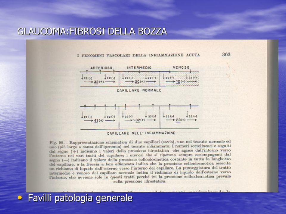 GLAUCOMA:FIBROSI DELLA BOZZA Favilli patologia generale Favilli patologia generale