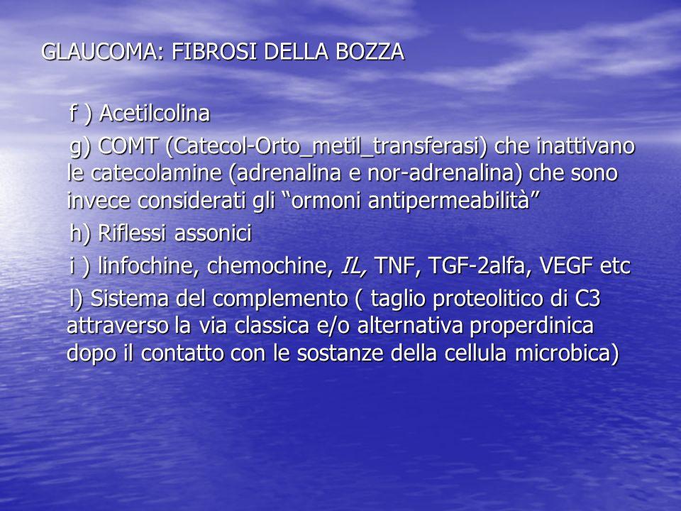 GLAUCOMA: FIBROSI DELLA BOZZA f ) Acetilcolina f ) Acetilcolina g) COMT (Catecol-Orto_metil_transferasi) che inattivano le catecolamine (adrenalina e