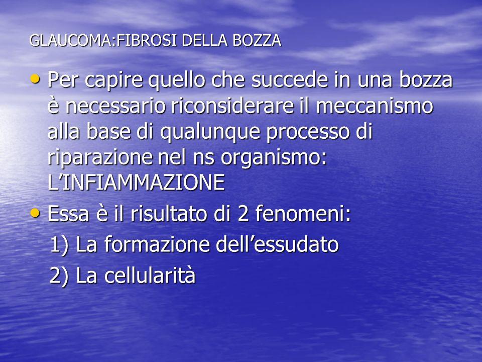 GLAUCOMA: LA FIBROSI DELLA BOZZA Farmaci ipotensivanti efficaci: Alfa stimolanti (Epinefrina, Brimonidina, Fenilefrina!!) Alfa stimolanti (Epinefrina, Brimonidina, Fenilefrina!!) B-Bloccanti (moderatamente per lazione vasocostrittrice) B-Bloccanti (moderatamente per lazione vasocostrittrice) Farmaci ipotensivanti non efficaci: CAI (scarsa efficacia) CAI (scarsa efficacia) Prostaglandine (deleterie) Prostaglandine (deleterie) Miotici (deleteri) Miotici (deleteri)