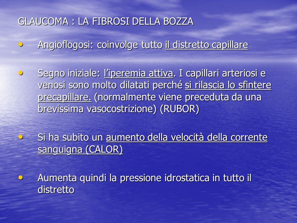 GLAUCOMA : LA FIBROSI DELLA BOZZA Angioflogosi: coinvolge tutto il distretto capillare Angioflogosi: coinvolge tutto il distretto capillare Segno iniz