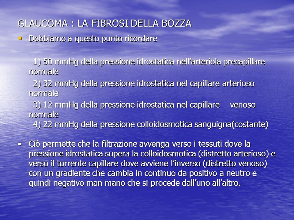GLAUCOMA: FIBROSI DELLA BOZZA Capsula di bozza in pz operato 4,3 aa prima.