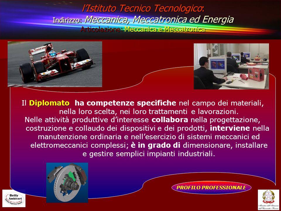 lIstituto Tecnico Tecnologico: Indirizzo: Meccanica, Meccatronica ed Energia Articolazione: Meccanica e Meccatronica PROFILO PROFESSIONALE Diplomato I