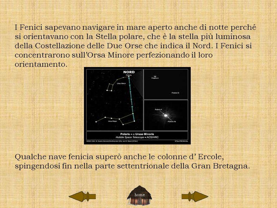 I Fenici sapevano navigare in mare aperto anche di notte perché si orientavano con la Stella polare, che è la stella più luminosa della Costellazione