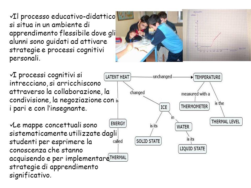 Il processo educativo-didattico si situa in un ambiente di apprendimento flessibile dove gli alunni sono guidati ad attivare strategie e processi cogn