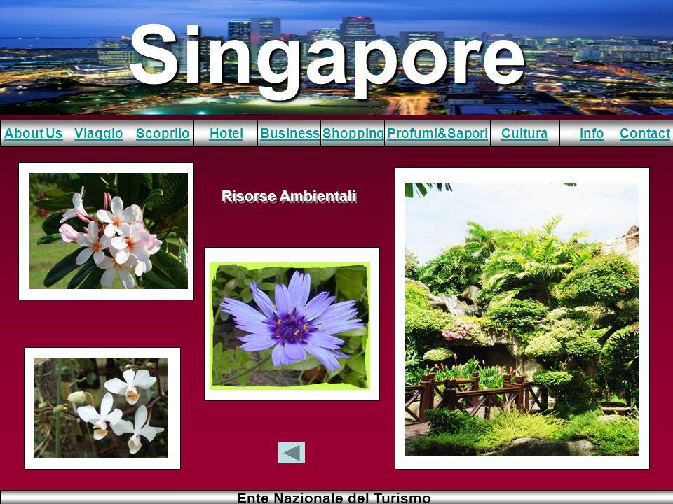 Singapore About UsViaggioScopriloHotelBusinessShoppingInfoProfumi&SaporiCulturaContact Ente Nazionale del Turismo Risorse Ambientali