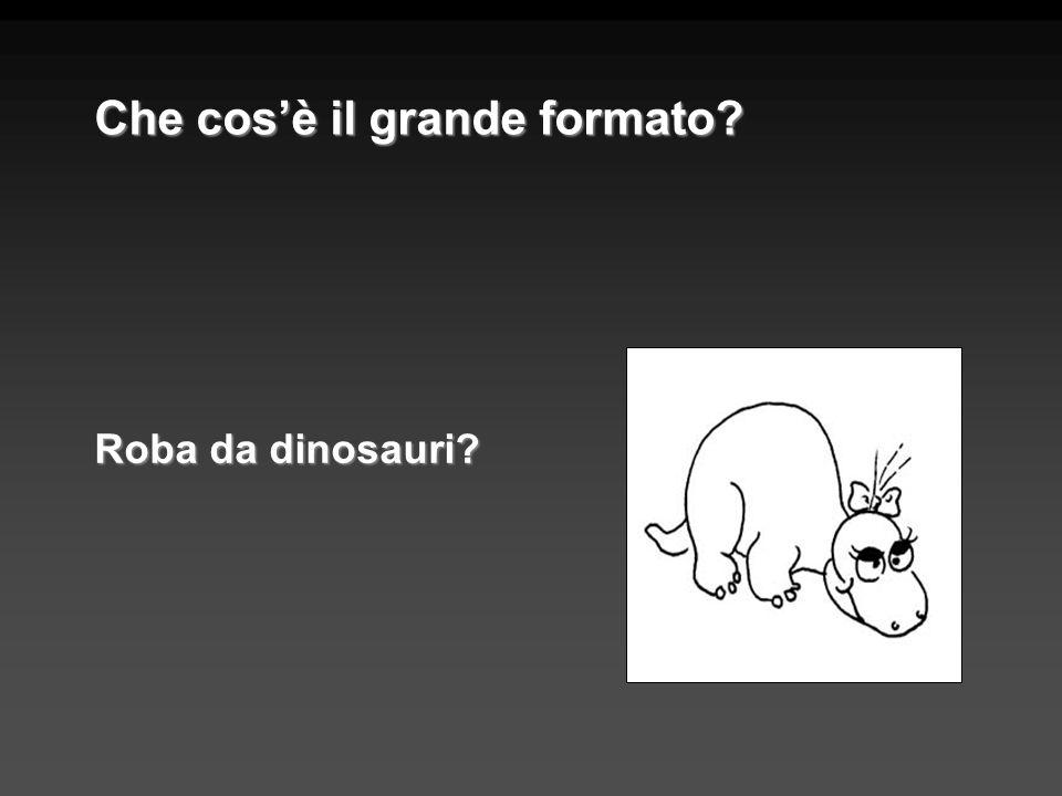 Roba da dinosauri? Che cosè il grande formato?