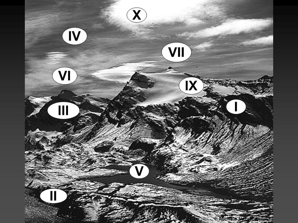 X IX V II III IV I VII VI © Michele Vacchiano