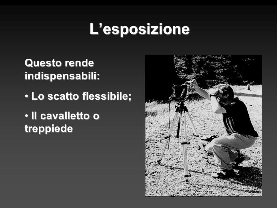 Lesposizione Questo rende indispensabili: Lo scatto flessibile; Lo scatto flessibile; Il cavalletto o treppiede Il cavalletto o treppiede