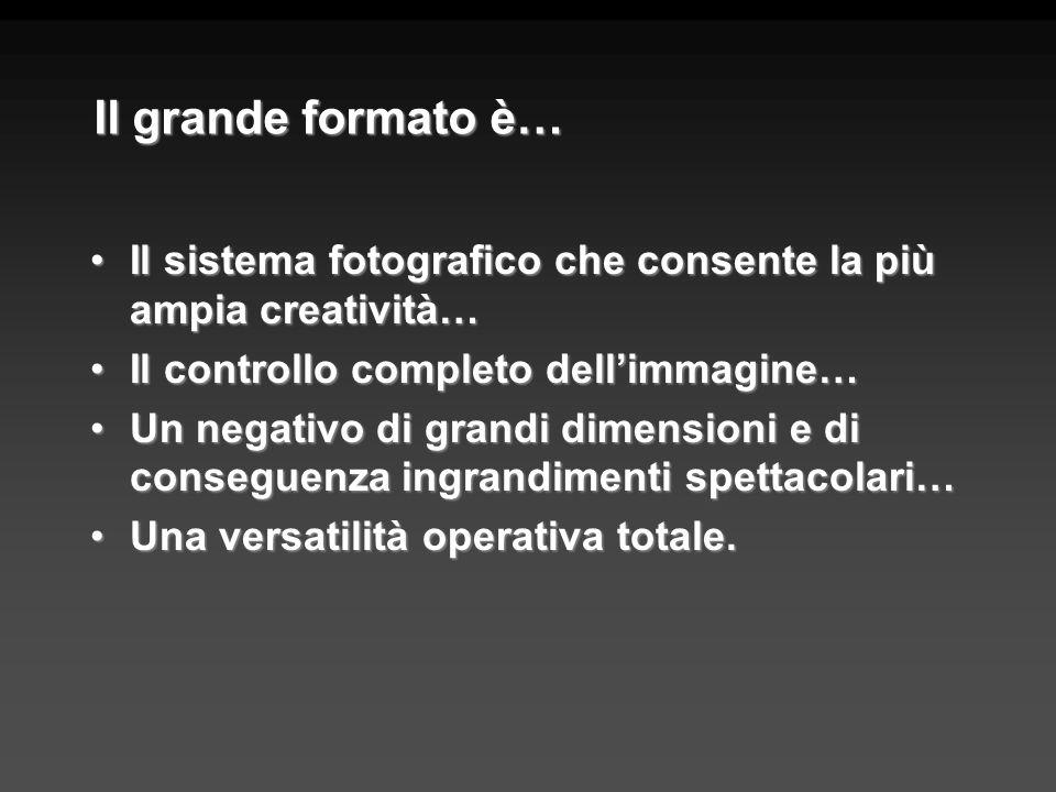 Il grande formato e il digitale Luso di dorsi digitali sulle fotocamere di grande formato ha preceduto di molto le compatte e le reflex digitali usate ormai dalla maggioranza dei dilettanti.