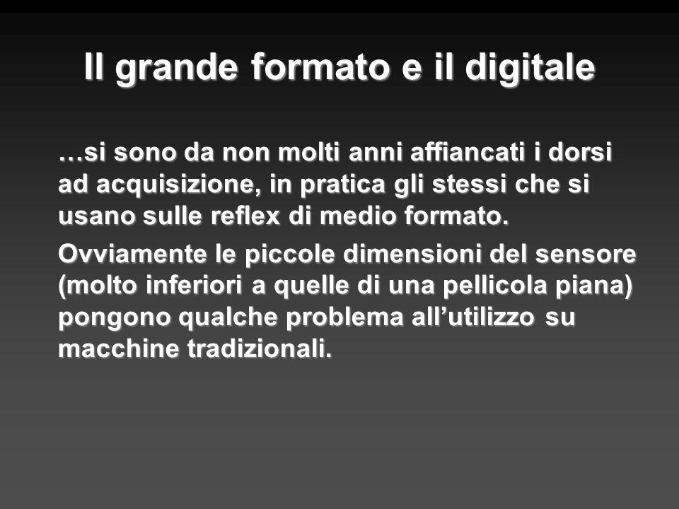 Il grande formato e il digitale …si sono da non molti anni affiancati i dorsi ad acquisizione, in pratica gli stessi che si usano sulle reflex di medi