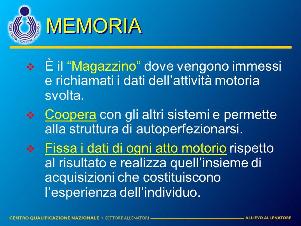 MEMORIA È il Magazzino dove vengono immessi e richiamati i dati dellattività motoria svolta. Coopera con gli altri sistemi e permette alla struttura d