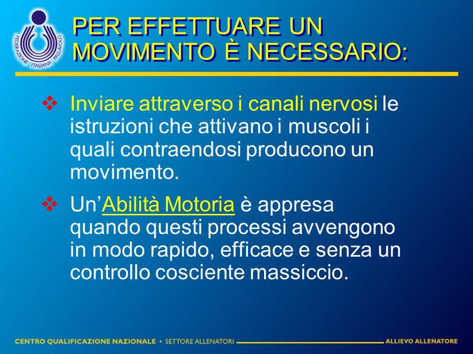 PER EFFETTUARE UN MOVIMENTO È NECESSARIO: Inviare attraverso i canali nervosi le istruzioni che attivano i muscoli i quali contraendosi producono un m