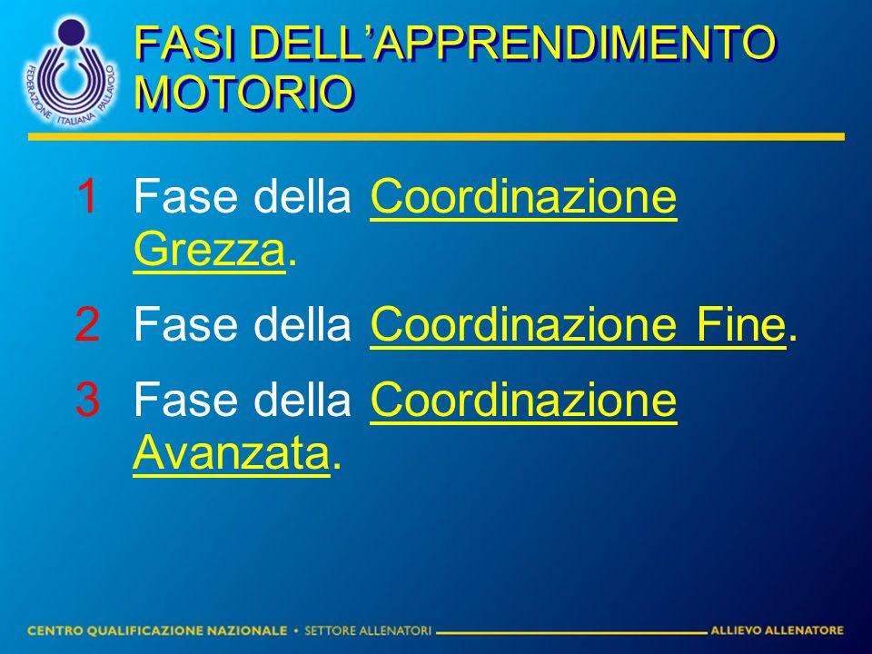FASI DELLAPPRENDIMENTO MOTORIO 1Fase della Coordinazione Grezza. 2Fase della Coordinazione Fine. 3Fase della Coordinazione Avanzata.