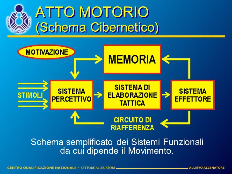 ATTO MOTORIO (Schema Cibernetico) Schema semplificato dei Sistemi Funzionali da cui dipende il Movimento.