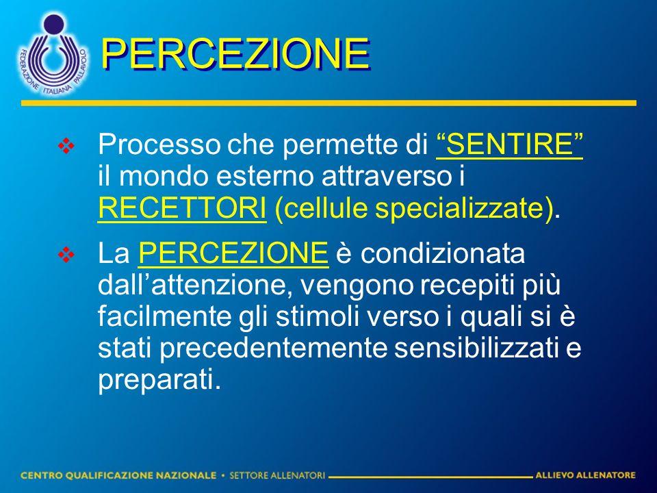 PERCEZIONE Processo che permette di SENTIRE il mondo esterno attraverso i RECETTORI (cellule specializzate). La PERCEZIONE è condizionata dallattenzio