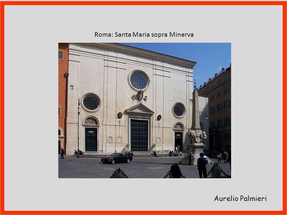 Aurelio Palmieri Denunciato da frà Agostino al padre provinciale Domenico Vita, questi «fece processo contro di me sopra alcuni articuli, ch'io non so