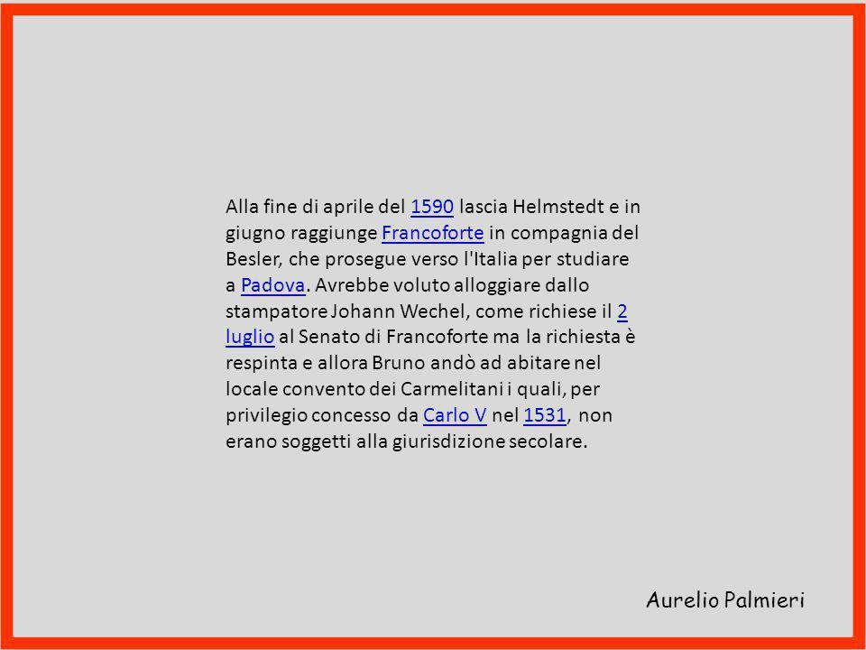 Aurelio Palmieri L'Accademia Julia di Helmstedt