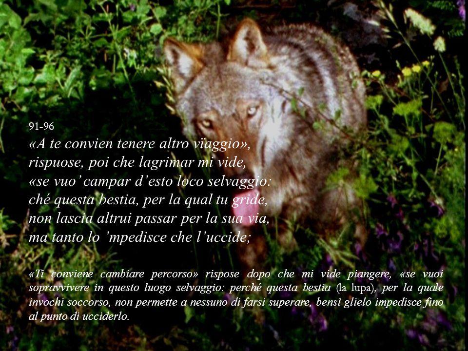 91-96 «A te convien tenere altro vïaggio», rispuose, poi che lagrimar mi vide, «se vuo campar desto loco selvaggio: ché questa bestia, per la qual tu