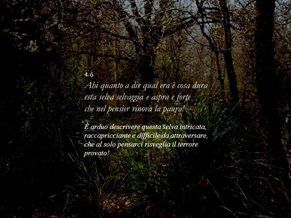 4-6 Ahi quanto a dir qual era è cosa dura esta selva selvaggia e aspra e forte che nel pensier rinova la paura! È arduo descrivere questa selva intric