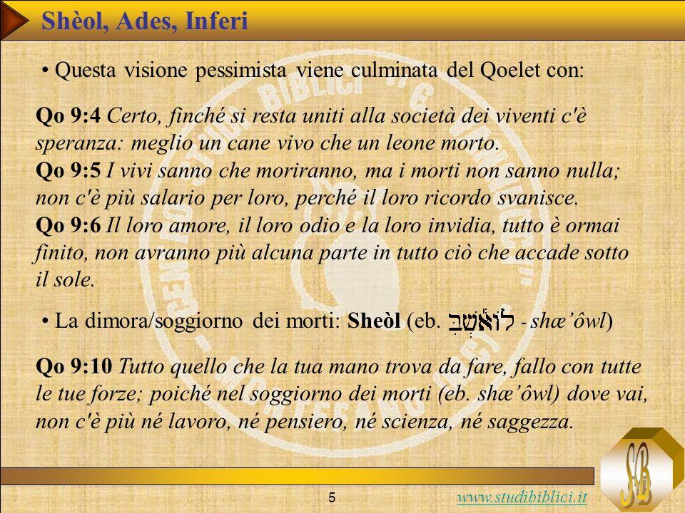 www.studibiblici.it 5 Qo 9:4 Certo, finché si resta uniti alla società dei viventi c'è speranza: meglio un cane vivo che un leone morto. Qo 9:5 I vivi
