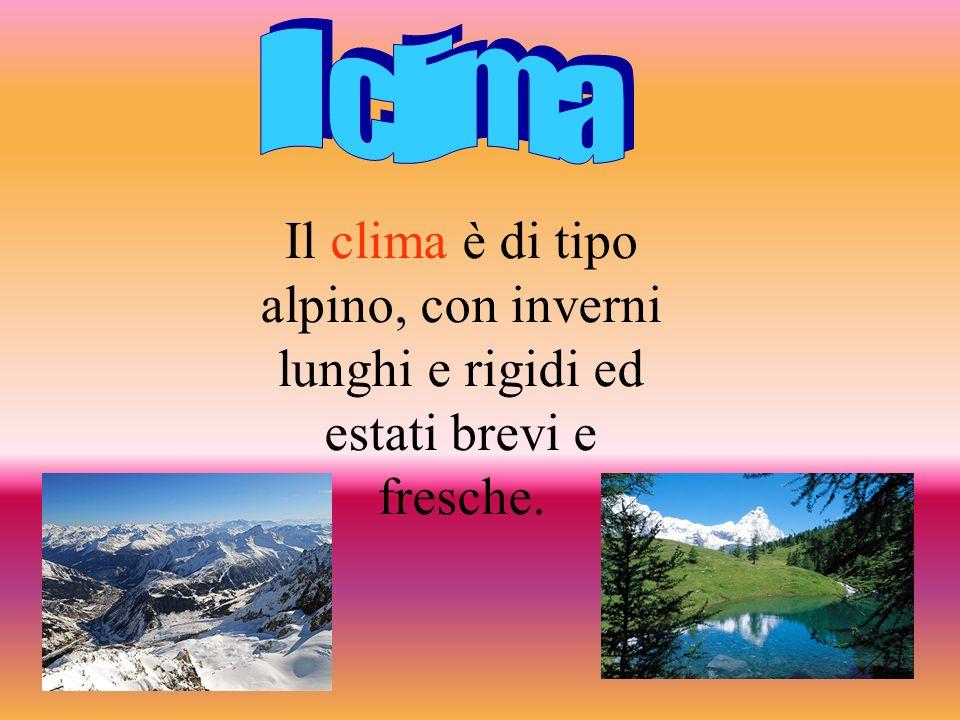 Il clima è di tipo alpino, con inverni lunghi e rigidi ed estati brevi e fresche.