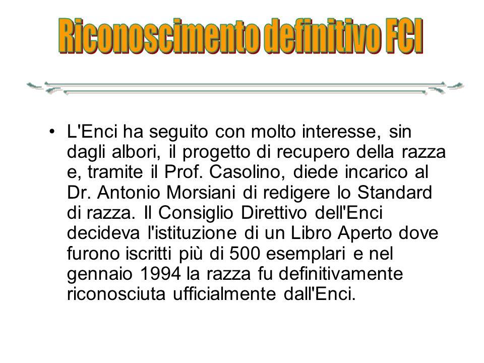 L'Enci ha seguito con molto interesse, sin dagli albori, il progetto di recupero della razza e, tramite il Prof. Casolino, diede incarico al Dr. Anton