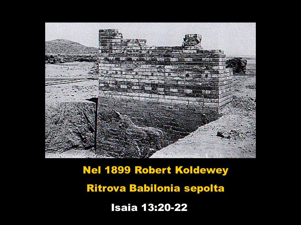 Nel 1899 Robert Koldewey Ritrova Babilonia sepolta Isaia 13:20-22