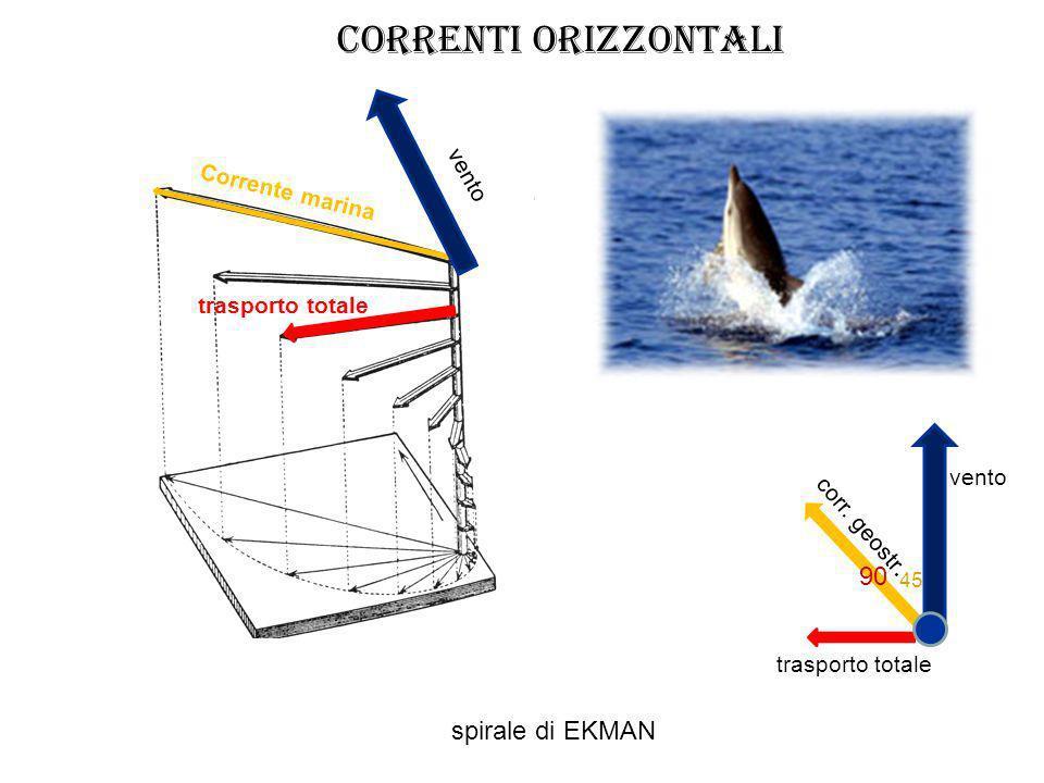 trasporto totale vento Corrente marina vento corr. geostr. 45 90 spirale di EKMAN trasporto totale CORRENTI orizzontali