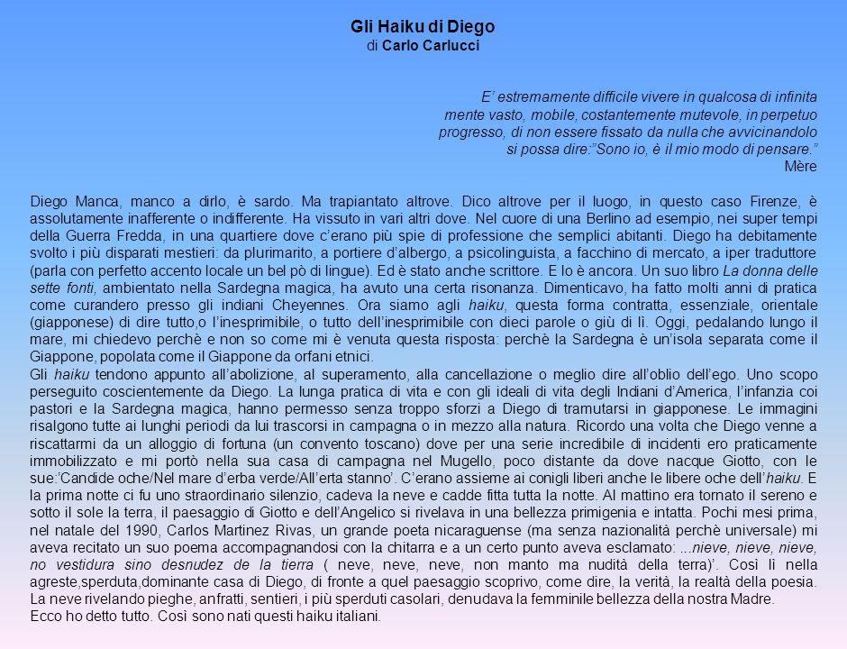 Gli Haiku di Diego di Carlo Carlucci E estremamente difficile vivere in qualcosa di infinita mente vasto, mobile, costantemente mutevole, in perpetuo
